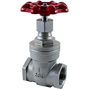 1/2 In. Stainless Steel Gate Valve - 200 PSI