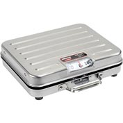 "Rubbermaid FGP250SS Pelouze SS Briefcase Receiving Dial Scale 250lb x 1lb 13-1/4"" x 10-1/2"""