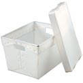 Corrugated Plastic Totes - Postal Nesting- With Lid  18-1/2x13-1/4x12 Natural - Pkg Qty 10