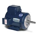 Leeson Motors Motor Electric Motors - 10HP, 230V, 1740RPM, DP, Rigid C Mount, 1.15 S.F.