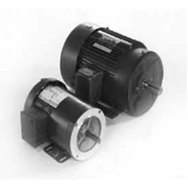 Marathon Motors Metric Motors, 3 Phase, TEFC, Rigid C Face Mount