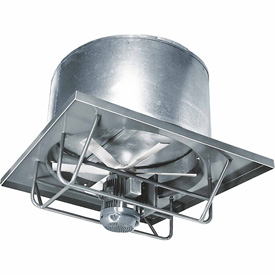 24 Inch 1 Hp Roof Ventilator
