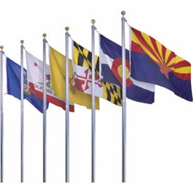 Annin® - US State & Territorial Flags