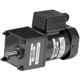 Induction Reversible Terminal Box Gear Motor
