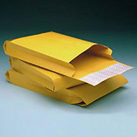 "Redi-Strip Kraft 2"" Expansion Envelopes, 10 x 13, 25/Pack"