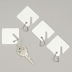 Sandusky Buddy 0017 - 100 Blank Plastic Key Tags - White
