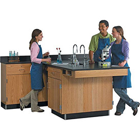 Science Lab Wall Service & Workstation Centers