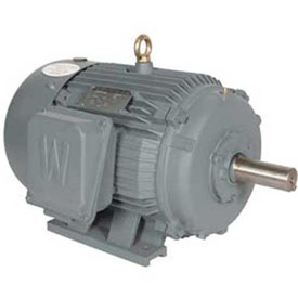 Worldwide Electric Advanced Design Rock Crusher Motors