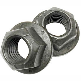 Hex Flange Lock Nuts